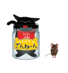 【びんねこ】黒猫バージョン(個別スタンプ:19)