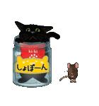 【びんねこ】黒猫バージョン(個別スタンプ:30)