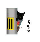 【びんねこ】黒猫バージョン(個別スタンプ:38)