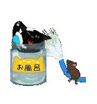 【びんねこ】黒猫バージョン(個別スタンプ:40)