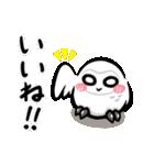 シロウくん(個別スタンプ:01)