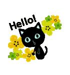 黒ネコのシエルブルー