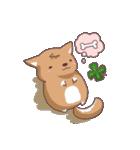 幸せの四つ葉のクローバー犬