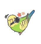 小鳥のスタンプ(個別スタンプ:11)