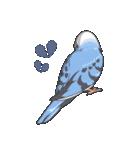 小鳥のスタンプ(個別スタンプ:12)