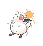 小鳥のスタンプ(個別スタンプ:33)