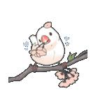 小鳥のスタンプ(個別スタンプ:34)