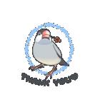 小鳥のスタンプ(個別スタンプ:35)