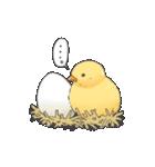小鳥のスタンプ(個別スタンプ:39)
