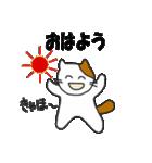 応援する猫 2016(個別スタンプ:01)