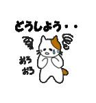 応援する猫 2016(個別スタンプ:19)