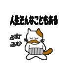 応援する猫 2016(個別スタンプ:27)