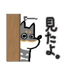 黒柴Gちゃん。(個別スタンプ:11)