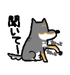 黒柴Gちゃん。(個別スタンプ:12)