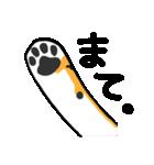 黒柴Gちゃん。(個別スタンプ:14)