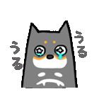 黒柴Gちゃん。(個別スタンプ:21)