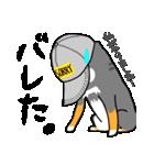 黒柴Gちゃん。(個別スタンプ:25)