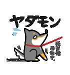 黒柴Gちゃん。(個別スタンプ:31)