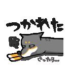 黒柴Gちゃん。(個別スタンプ:37)