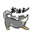 黒柴Gちゃん。(個別スタンプ:39)