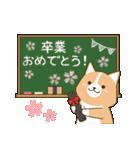 いたわりコーギー★季節行事・イベント編★(個別スタンプ:08)