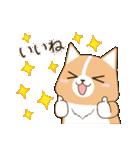 いたわりコーギー★季節行事・イベント編★(個別スタンプ:14)