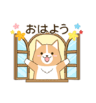 いたわりコーギー★季節行事・イベント編★(個別スタンプ:37)