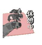 身近な動物たち(個別スタンプ:04)