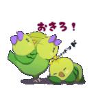 幸せなインコたち(個別スタンプ:01)
