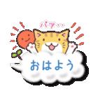 トラちゃん雲に乗る(個別スタンプ:01)