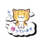 トラちゃん雲に乗る(個別スタンプ:11)