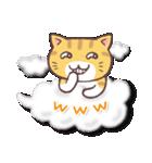 トラちゃん雲に乗る(個別スタンプ:17)