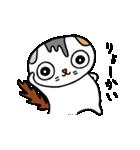 猫とフクロウ(個別スタンプ:07)