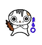 猫とフクロウ(個別スタンプ:18)
