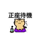 きじとらニャンコ(個別スタンプ:01)