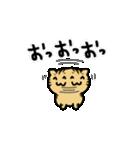 きじとらニャンコ(個別スタンプ:20)