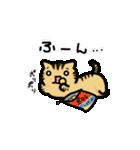 きじとらニャンコ(個別スタンプ:22)