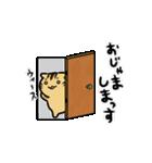 きじとらニャンコ(個別スタンプ:37)