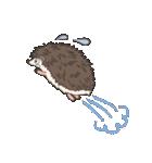 うつろなハリネズミ(個別スタンプ:30)