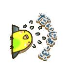 インコちゃん ラブリーな日常パック(個別スタンプ:15)