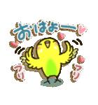 インコちゃん ラブリーな日常パック(個別スタンプ:21)