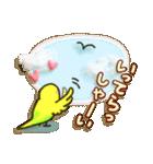 インコちゃん ラブリーな日常パック(個別スタンプ:23)