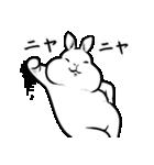 丸くて白いウサギ(個別スタンプ:37)