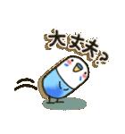 癒しのお薬・カプセルインコちゃん(個別スタンプ:01)