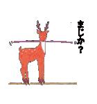 博多のしか(個別スタンプ:33)