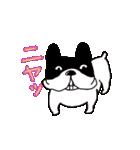 愛すべきぶさかわ犬!ワンコがいっぱい(個別スタンプ:3)