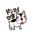 愛すべきぶさかわ犬!ワンコがいっぱい(個別スタンプ:21)