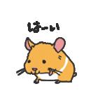 ハムスターがいっぱい(個別スタンプ:01)