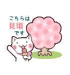 春猫・詰め合わせ(個別スタンプ:05)