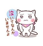 春猫・詰め合わせ(個別スタンプ:16)